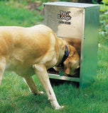 chow hound outdoor-dog-feeder