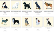 dog beverage coasters examples 2