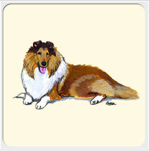 dog beverage coaster -collie