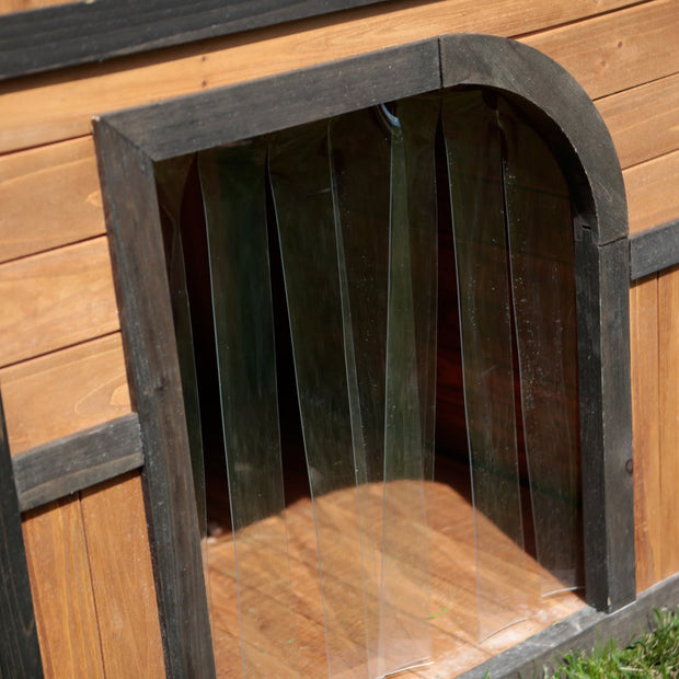 Dog house with included dog doors
