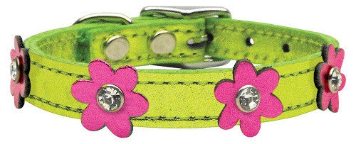 metallic lime-Pink flower small dog leather collar