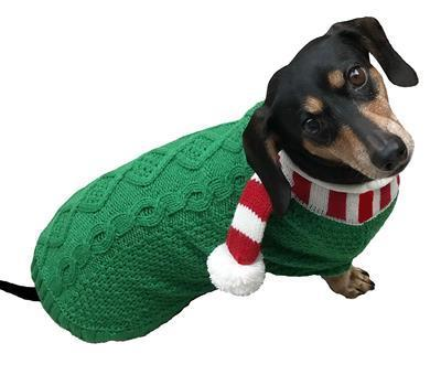 green knit dog sweater with red white scarf