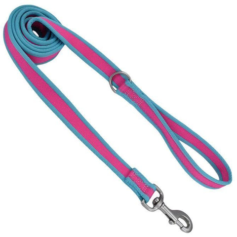 Teal and Fushia reflective dog lead