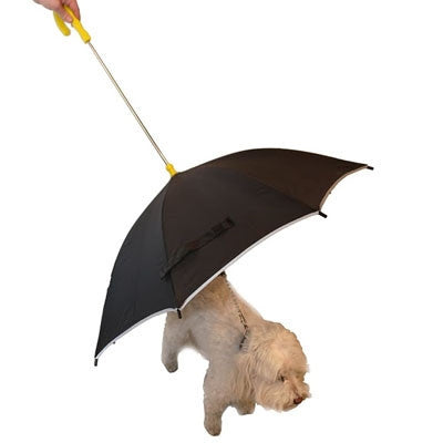 Dog Umbrella - keeps rain off dogs on walks