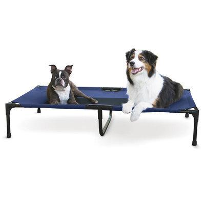 Blue Extra large Cot Pet bed
