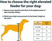 Dog Feeder height guide diagram