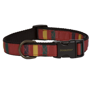 ranier-dog-collar
