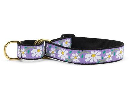 Daisy No Choke Training Dog Collar