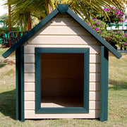 New Age Dog House