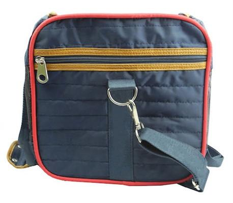 Airplane ready small dog carrier