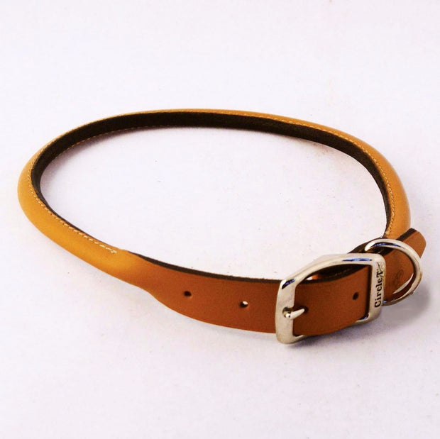 Circle T Rounded Leather Dog Collar - Tan