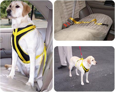 Vehicle Pet Safety Harness