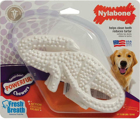 Nylabone Dental Dinosaur