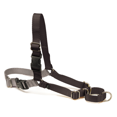 Easy Walk Harness Black