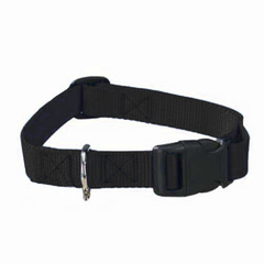 Adjustable Nylon Dog Collars