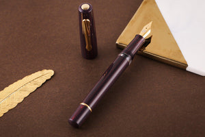 Narwhal Limited Edition 365 Schuylkill Ebonite Fountain Pen Medium Nib-Galen Leather