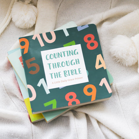 Counting Through the Bible Board Book
