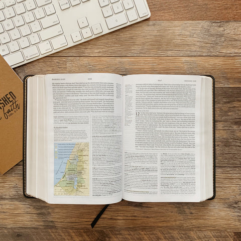 Bibles – The Daily Grace Co
