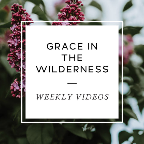 Grace In The Wilderness Teaching Videos