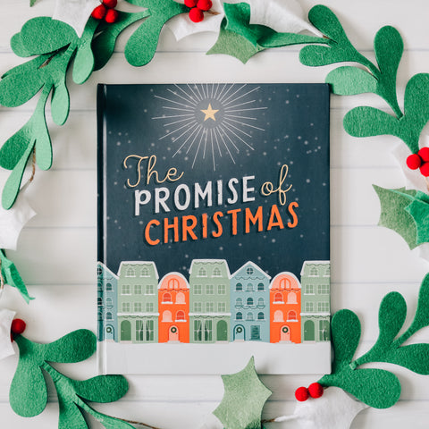 The Promise of Christmas Children's Book