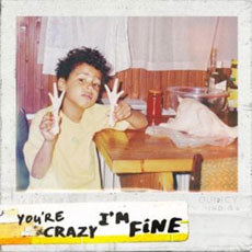 You're Crazy I'm Fine by Quincy