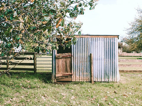 11 Ways To Customise A Metal Shed
