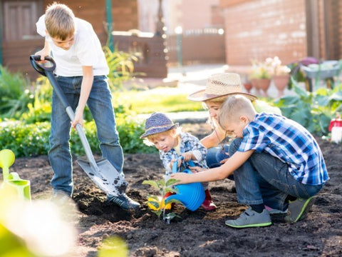 Get The Kids Involved in Gardening