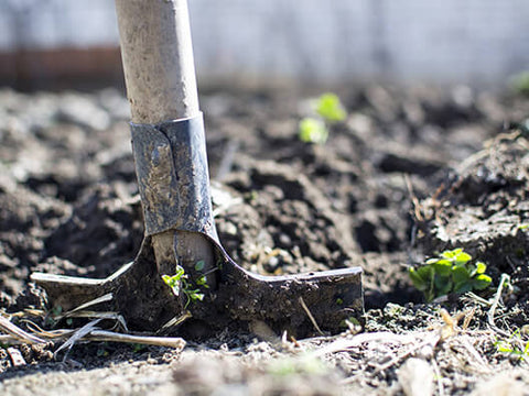 Must Have Garden Tools For Spring 2019