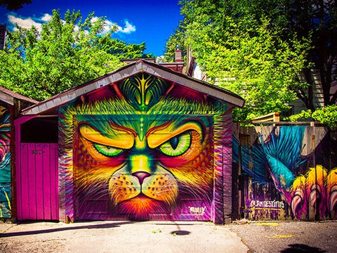 How To Paint A Mural On Your Shed