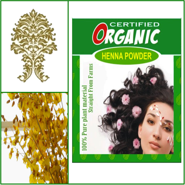 ONE Box. Certified Organic Henna. Golden Brown Hair Color. 100g.