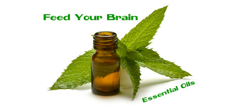 Feed Your Brain Essential Oils text next to essential oil bottle and mint leaves