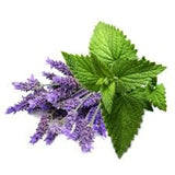 lavender flowers and peppermint leaves