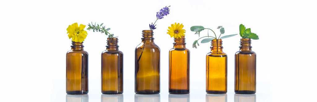 row of six brown glass bottles with flowers and plants sticking out of them