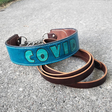 handmade brown and blue leather martingale dog collar and leash
