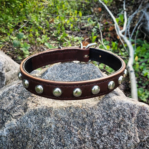 handmade brown leather dog collar with silver spots
