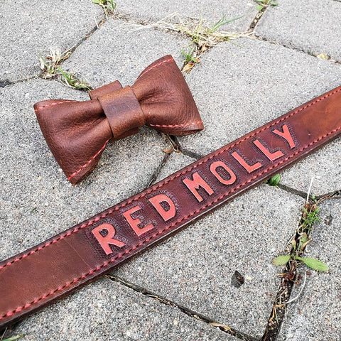 handmade brown leather dog collar with bow tie
