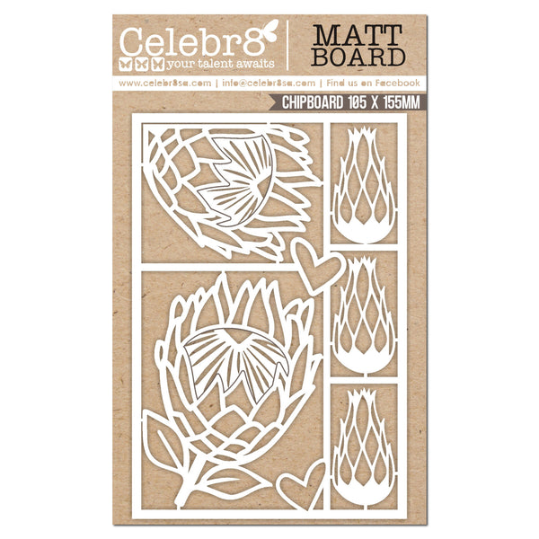 CELEBR8 Matt Board Equi - Protea Set
