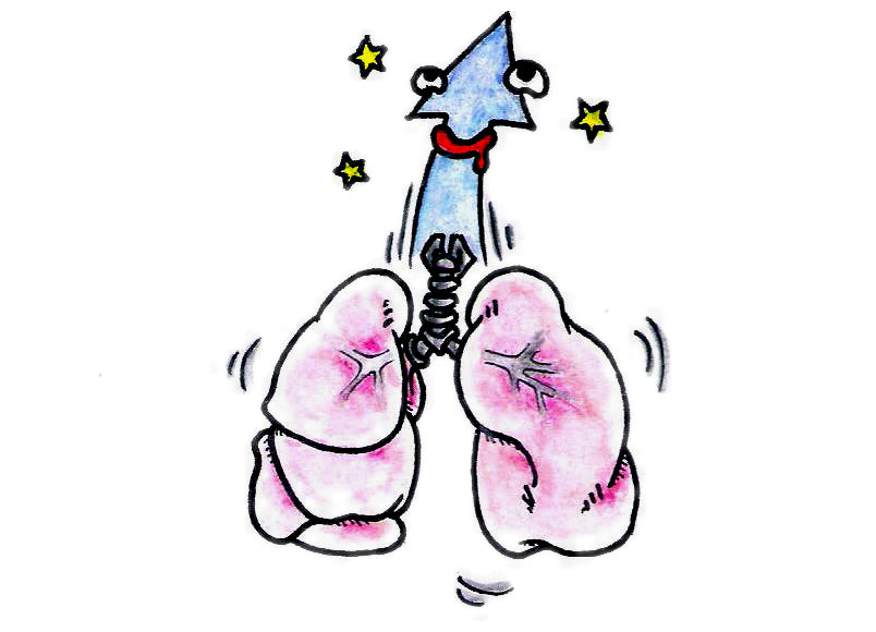 Lung erection