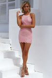 Inka Lace Dress (Baby Pink)