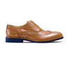 Tan Brown & Navy Blue Brogue Wingtip