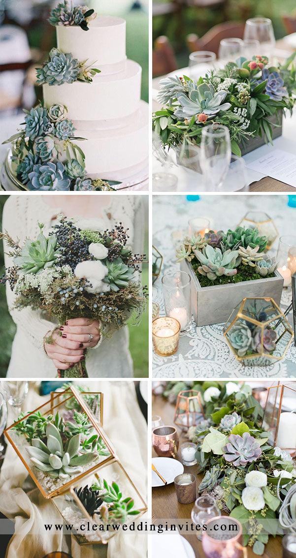 Succulent themed country style wedding