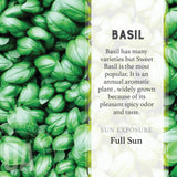 Basil Grow Kit by the Urban Agriculture Company  - Wilson Street - Urban Agriculture Company - 2