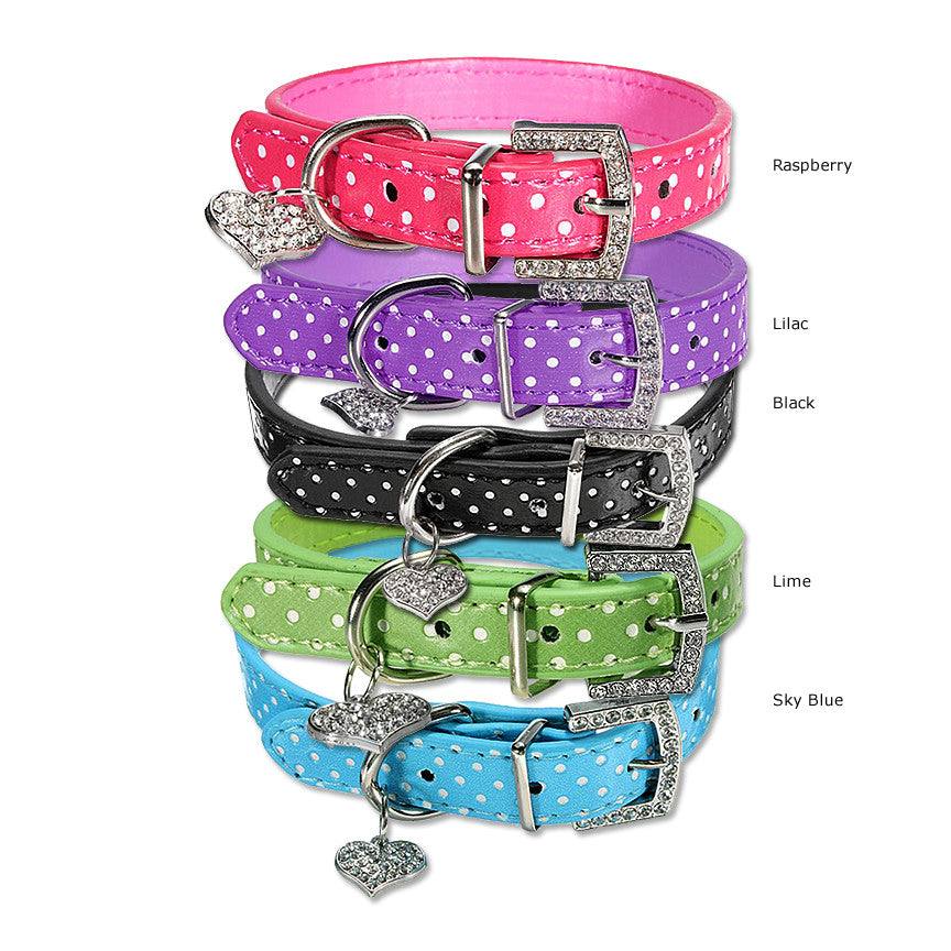 Leather Small Dog Collar with White Dots, Small Dog Mall