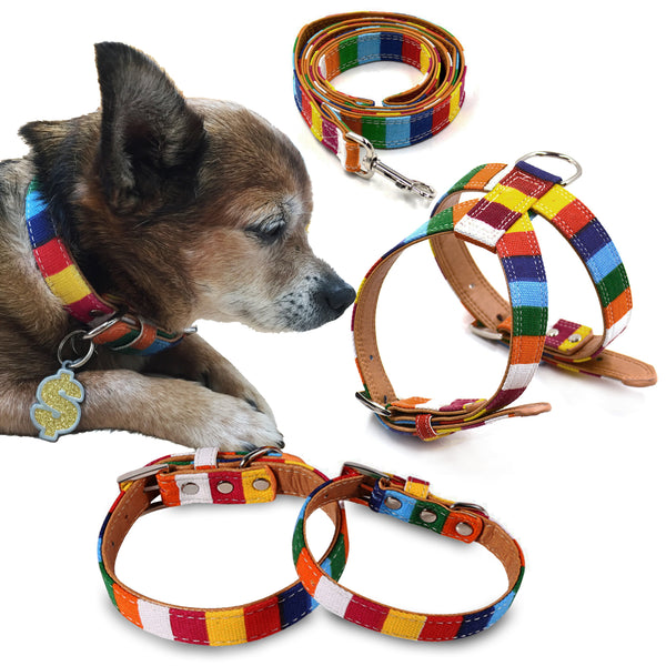 Canvas Stripe Small Dog Collar, Leash or Harness