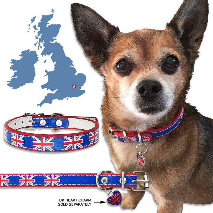 Small Dog Mall, British, United Kingdom, Union Jack, English Flag Small Dog Collar