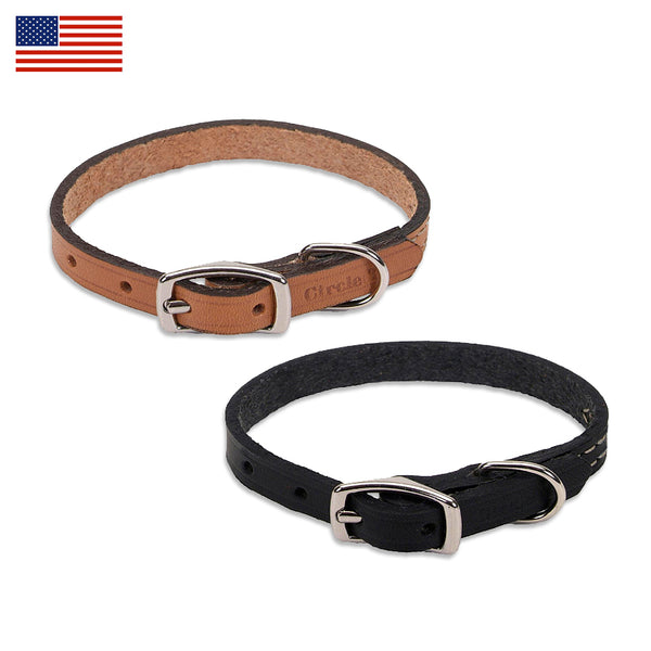 Classic Leather Small Dog Collar