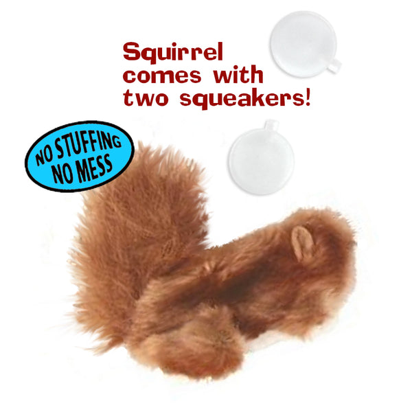 Adorable Plush Dr. Noys Squirrel Small Dog Toy