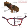 Black Gingham Dog Collar & Harness, , Collar, Small Dog Mall, Small Dog Mall - Good things for little dogs.  - 3
