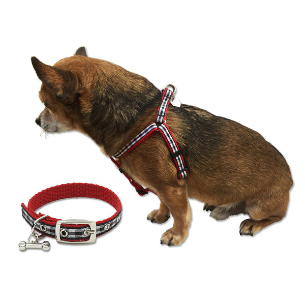 Black Gingham Dog Collar & Harness, , Collar, Small Dog Mall, Small Dog Mall - Good things for little dogs.  - 1