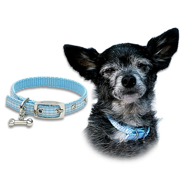 Blue Gingham Collar for Small Dogs